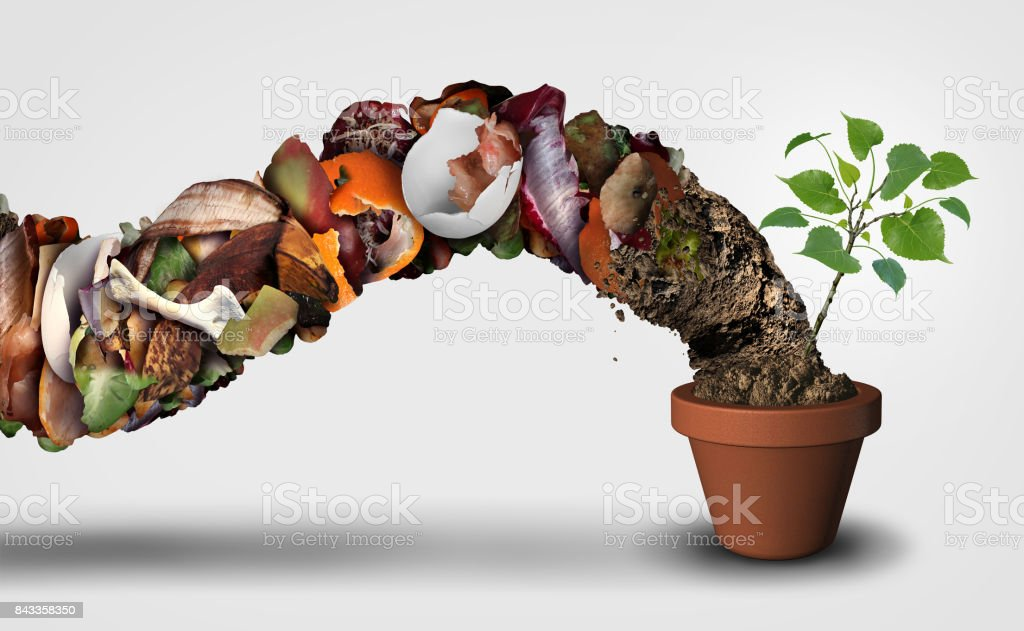 Compost And Composting stock photo