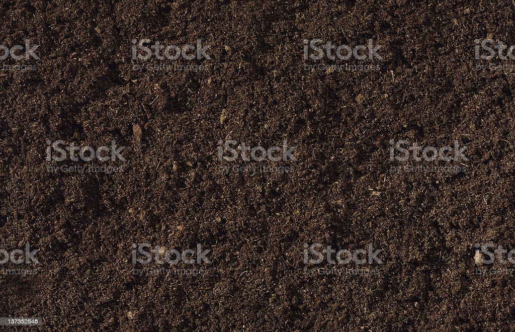 Compost Background stock photo