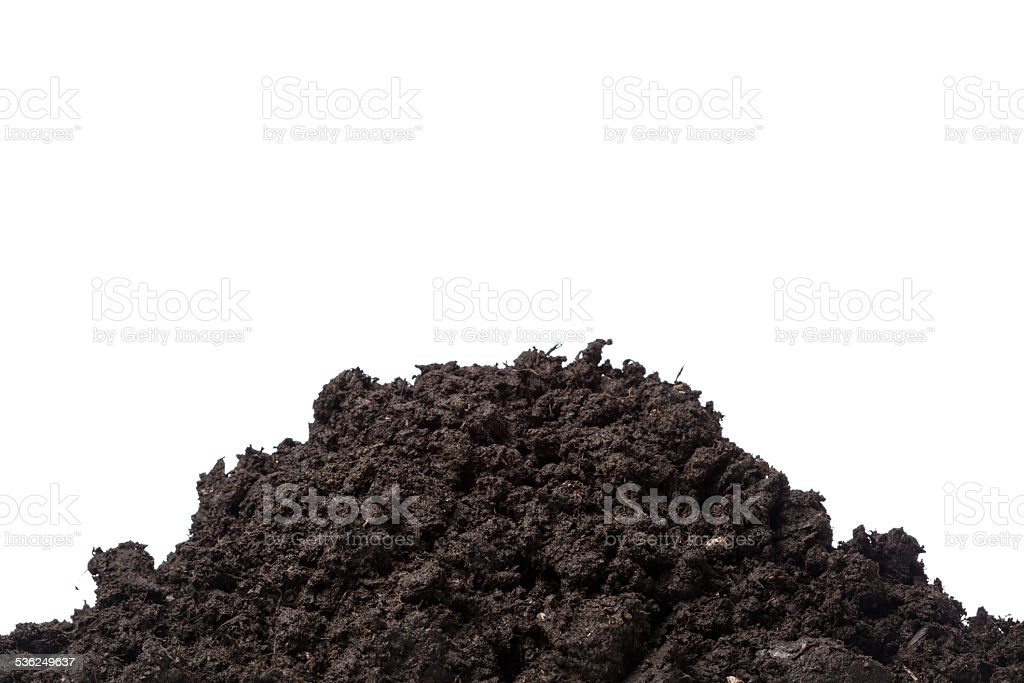 Compost dirt for gardening on white background stock photo