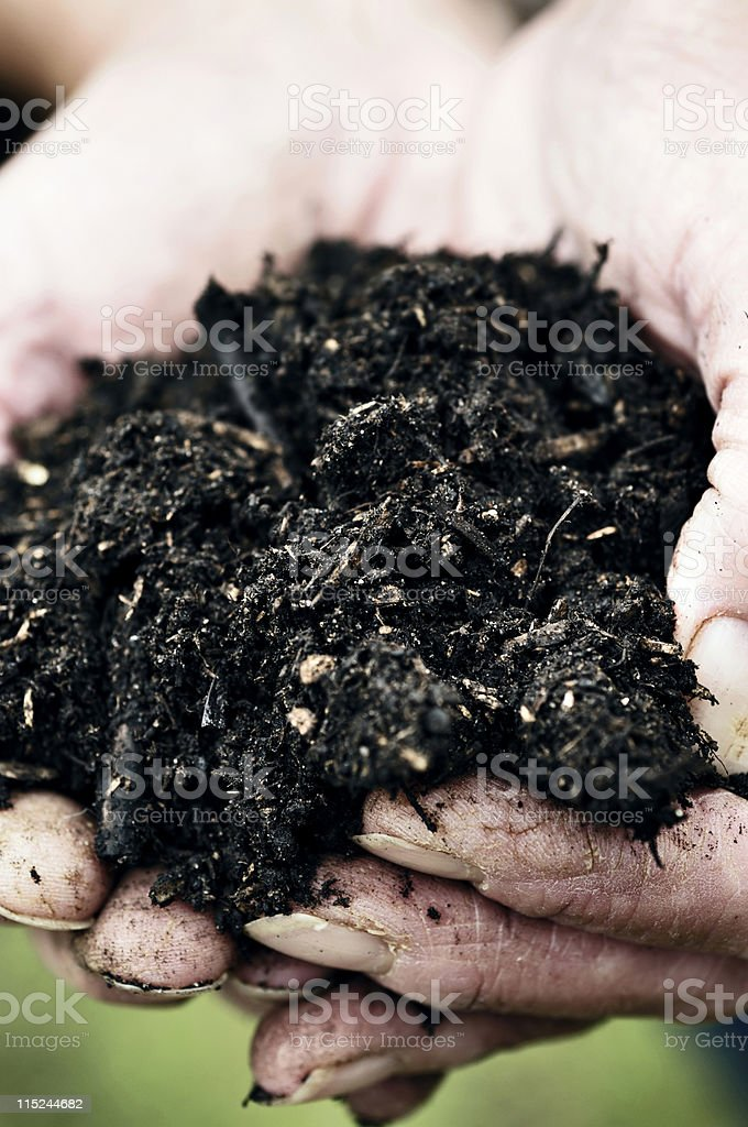 compost in hand royalty-free stock photo