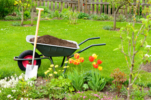 Compost Wheelbarrow with compost for the flowerbeds lawn stock pictures, royalty-free photos & images