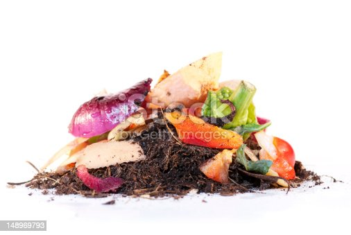 Looking at the complete process of recycling vegetable scraps as worms break it down to produce compost. Isolated on a white background.