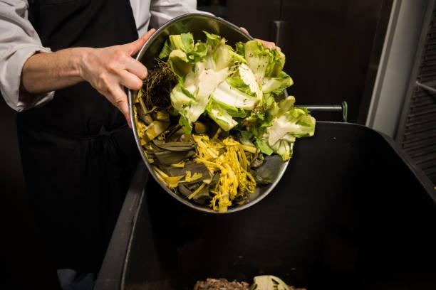 kompostering i ett kommersiellt kök - food waste bildbanksfoton och bilder