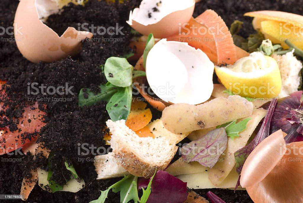 Composting bildbanksfoto