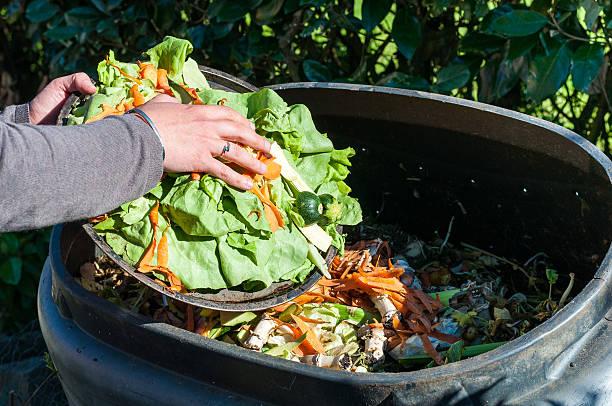 kompostierung - bio lebensmittel stock-fotos und bilder