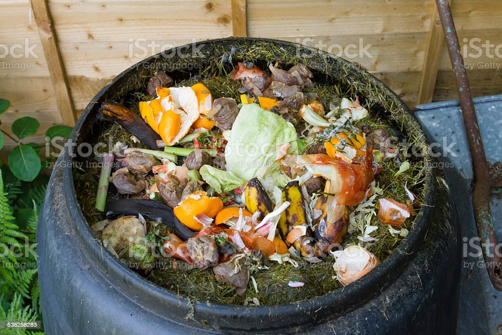 Composting using a plastic compost bin stock photo
