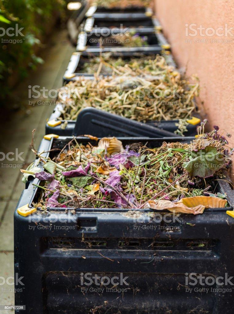 Compost,waste in black bin. stock photo