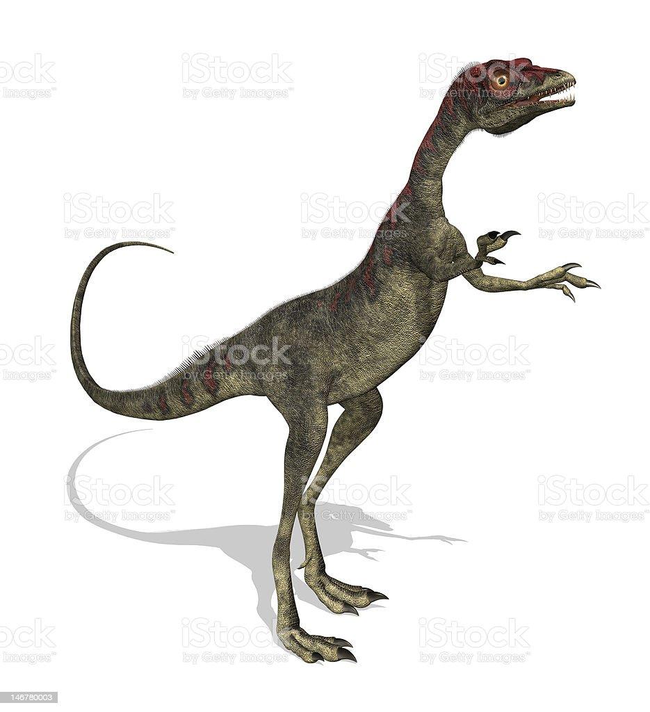 Compsognathus Dinosaur royalty-free stock photo