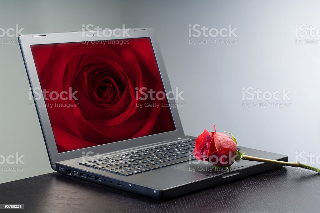 Computer and rose royalty-free stock photo