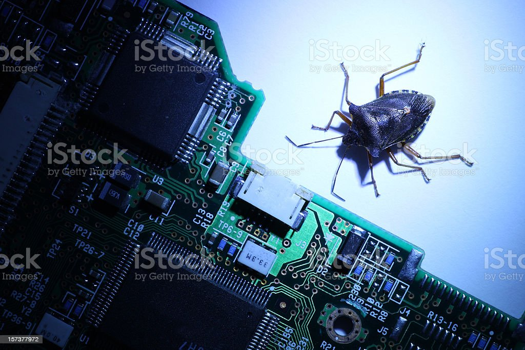Computer Bug royalty-free stock photo
