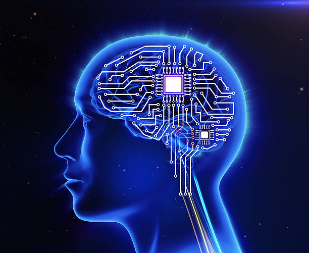 Computer circuit board in the form of the human brain stock photo