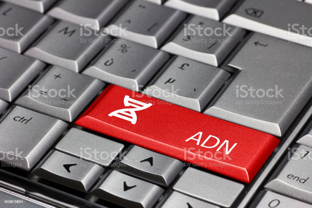Computer key with - ADN (French - Spanish) stock photo