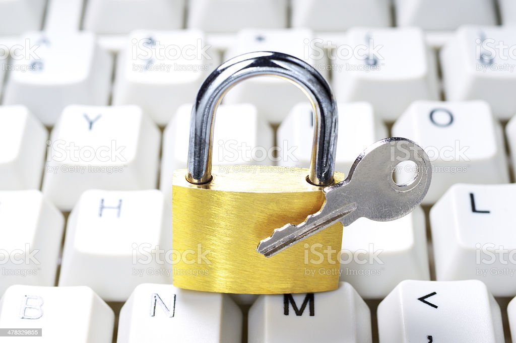 Computer security system. royalty-free stock photo