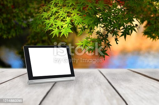 1147023758 istock photo Computer tablet with white blank screen on wooden plank on maple leaves tree background 1214880095