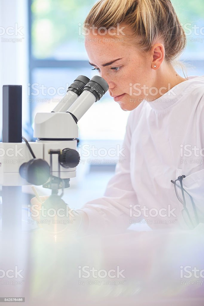 concentrating in the lab stock photo