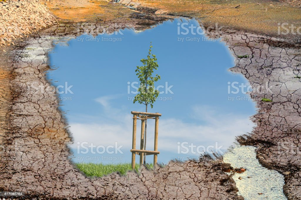 Concept Climate change and climate disaster. stock photo