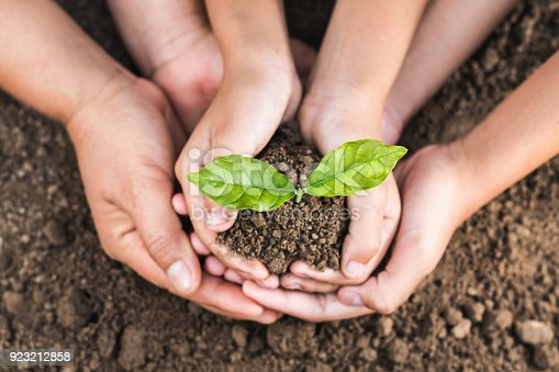 istock concept eco hand helping holding protection young plant 923212858