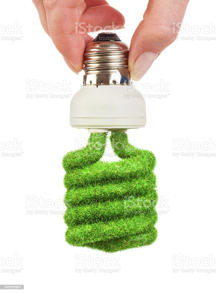 Concept Eco light bulb royalty-free stock photo