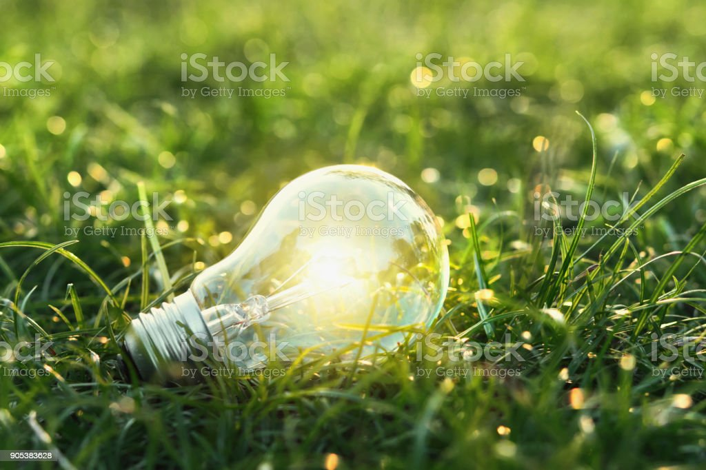 concept eco. lightbulb on green grass with sunset and bokeh background stock photo