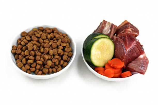concept for different dog feeding methods with bowl with dry food kibbles and bowl with chunk of raw meat and vegetables next to each other isolated on white background - desperdício alimentar imagens e fotografias de stock