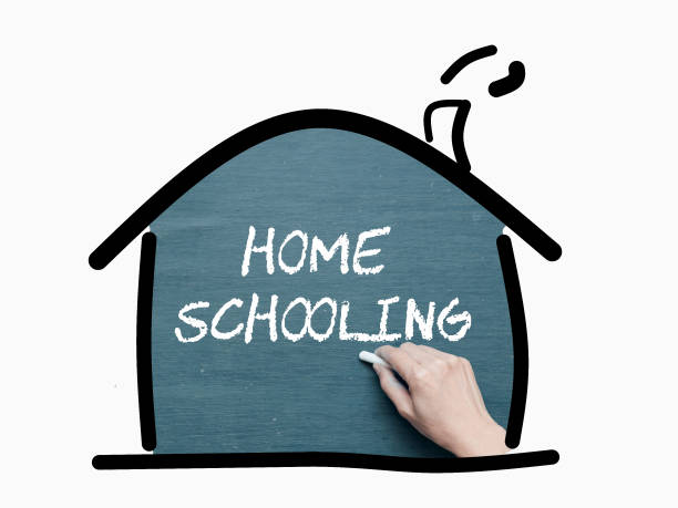 Concept for homeschooling, education, school at home, parent teaching their kids, learning at home. stock photo