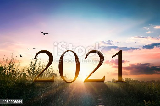 istock 2021 concept: Happy New year 2021  on the grass with sunset light 1282506564