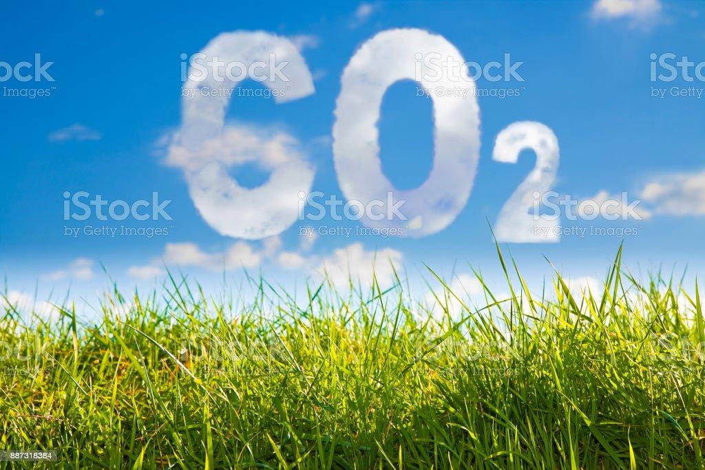 Imagen de concepto de CO2 contra una hierba salvaje verde sobre fondo de cielo - foto de stock