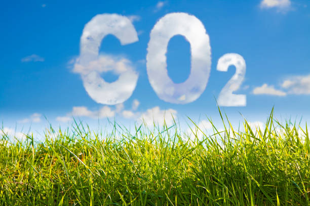 co2 concept image against a green wild grass on sky background - anidride carbonica foto e immagini stock