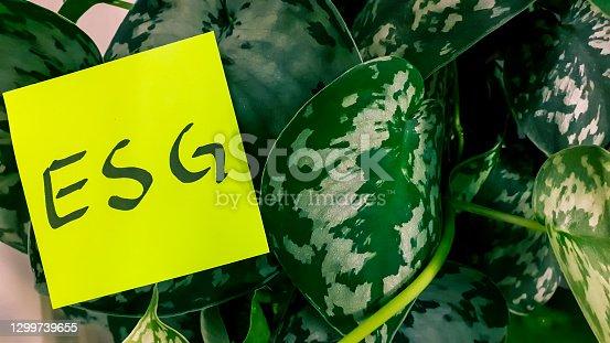 istock ESG concept in lush surroundings 1299739655