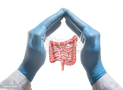 1035479448 istock photo Concept of a healthy bowel. 1260524585