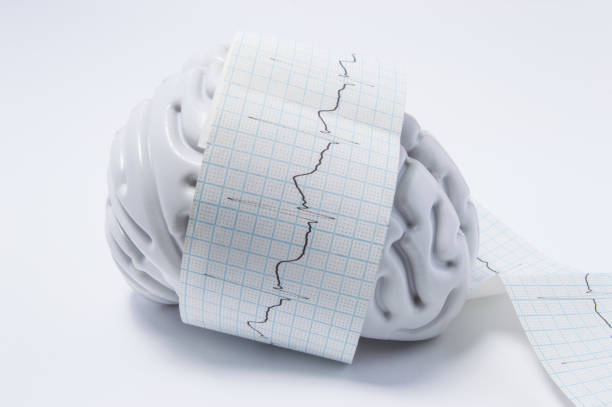 Concept of brain exam as ECG waves. Shape of human brain entwined with paper tape elektrokardiogrammy wave, which displays process of brain research in neuroscience or medical exam to detect diseases stock photo