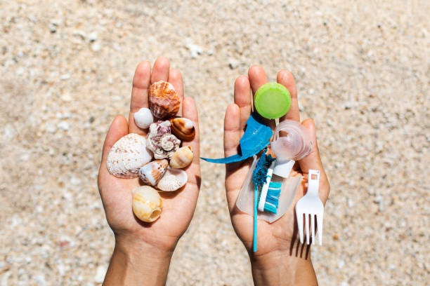 Concept of choice: save nature or continue to use disposable plastic Concept of choice: save nature or continue to use disposable plastic. One hand holding beautiful shells, in the other - plastic waste. Beach sand on background. Environmental pollution problem. disposable stock pictures, royalty-free photos & images