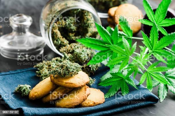 Begreppet Matlagning Cookies Med Knoppar Cannabis Med Cannabis Herb Cookies Med Knoppar Cannabis Och Marijuana På Bordet-foton och fler bilder på Choklad