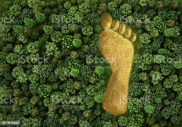 Concept of ecology picture id521614940?b=1&k=6&m=521614940&s=612x612&h=vaowdwm rwnjbuukb yvja2irfdvf7n y30jdz94fe8=