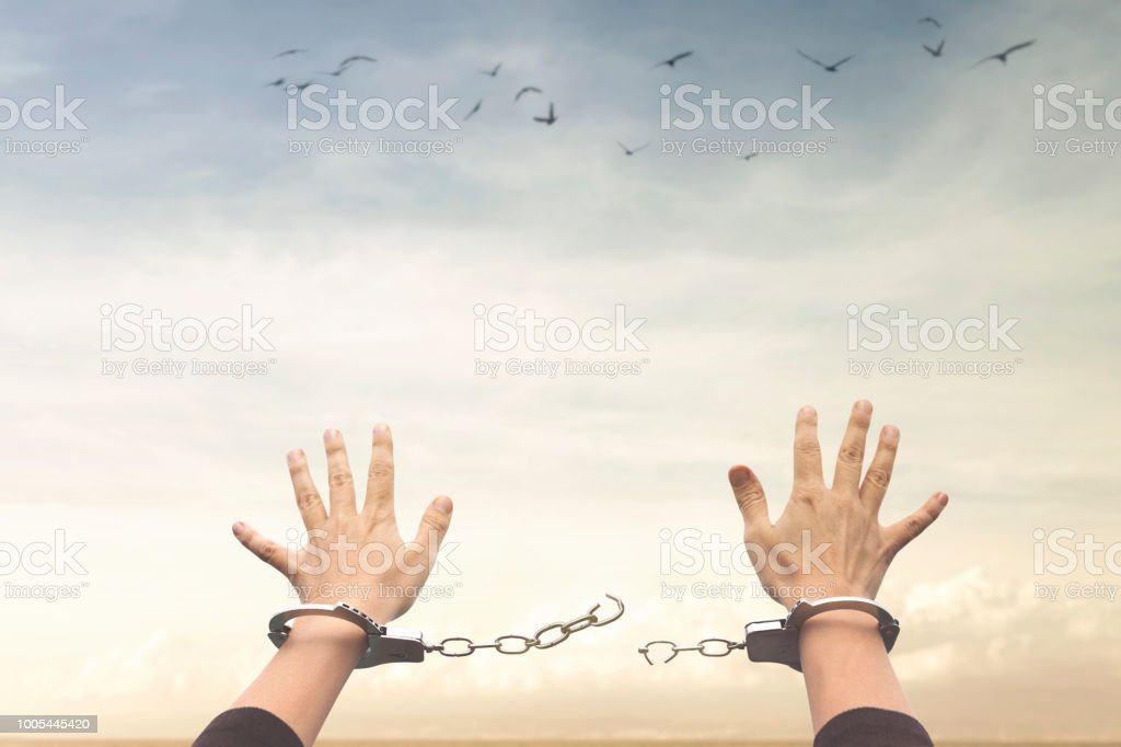 concept of freedom stock photo