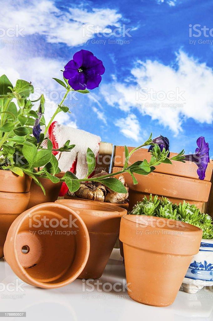 Concept of gardening, nature theme stock photo