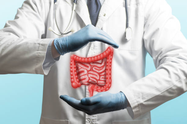 Concept of healthy bowel. stock photo
