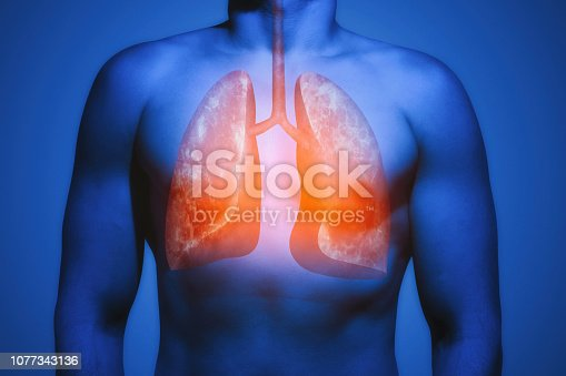 istock Concept of healthy lungs. 1077343136