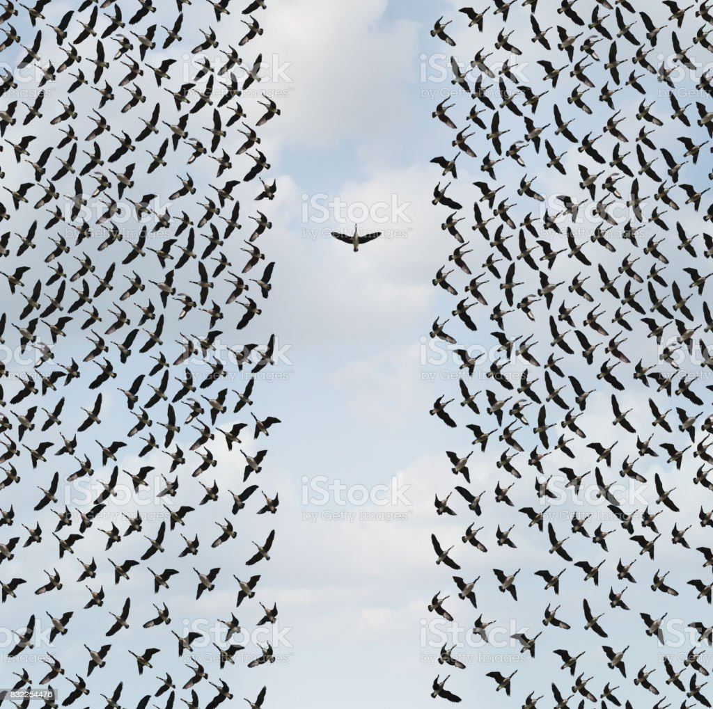 Concept Of Individualism Concept of individualism and Individuality symbol or independent thinker idea and new leadership concept or individual courage as a group of birds flying with one individual in the opposite direction as a business icon in a 3D illustration style. Abstract Stock Photo