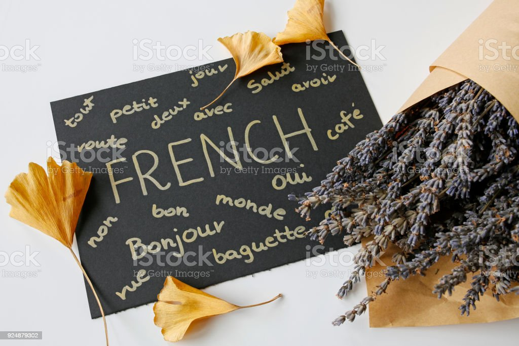 concept of learning french language stock photo