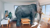 Concept of not having enough space in a house or apartment. Maybe it is time to move to another place. Elephant trapped inside the living room and looking out of the windows. Probably daydreaming about another place to live with more space.\nNote: The image on the tv is also my work. File #1152458876