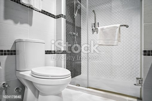 Concept of modern decoration design of bathroom with toilet and shower decorating with black and white ceramic for luxury hotel, condominium, residential