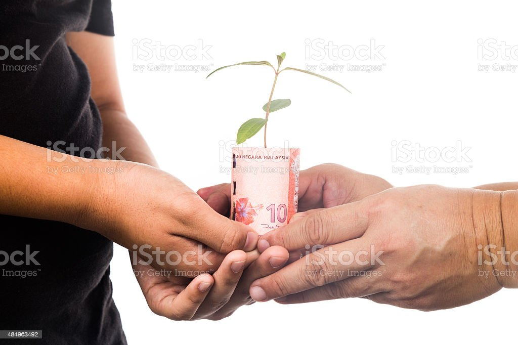Concept of presenting plant growing from Malaysia Ringgit, symbo stock photo