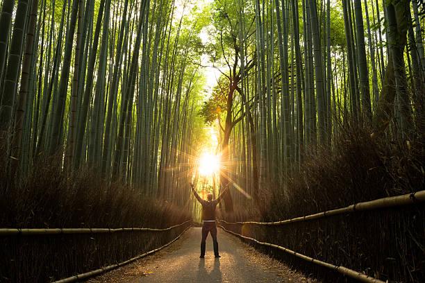 concept de réussite dans un cadre naturel - paysage zen photos et images de collection
