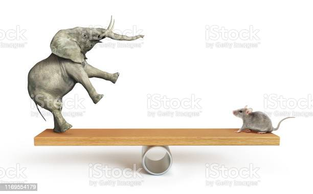 Concept of things importance elephant and mouse balanced on a seesaw picture id1169554179?b=1&k=6&m=1169554179&s=612x612&h=3nddrcoioumvyrj7pabh99kjdrsamciqrzzikwxapoq=
