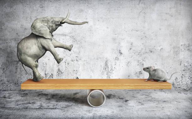 Concept of things importance elephant and mouse balanced on a seesaw picture id1169554319?b=1&k=6&m=1169554319&s=612x612&w=0&h=rqc2g1qixkktjjle7dfh4f4e8ps3pdjxiwj txasfya=