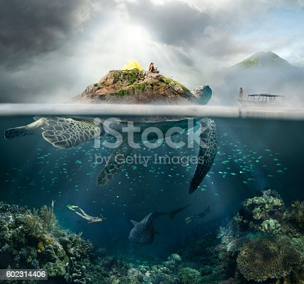 Beautiful underwater view island-turtle and traveler above and below the water surface in turquoise waters of tropical ocean. The concept of travel and adventure in the mountains and under water.