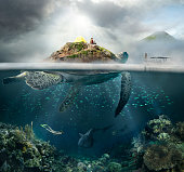 Concept of travel in the mountains, and under water.