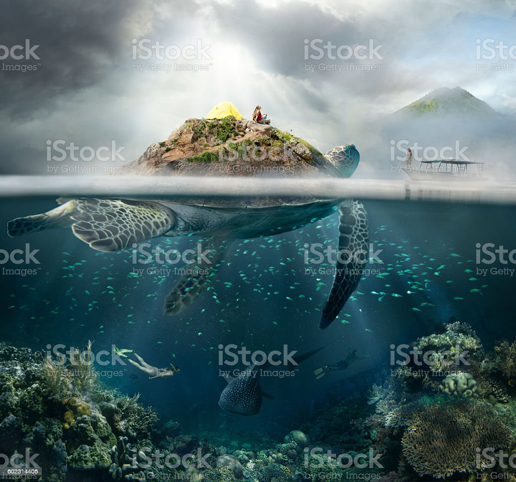 Concept of travel in the mountains, and under water. stock photo