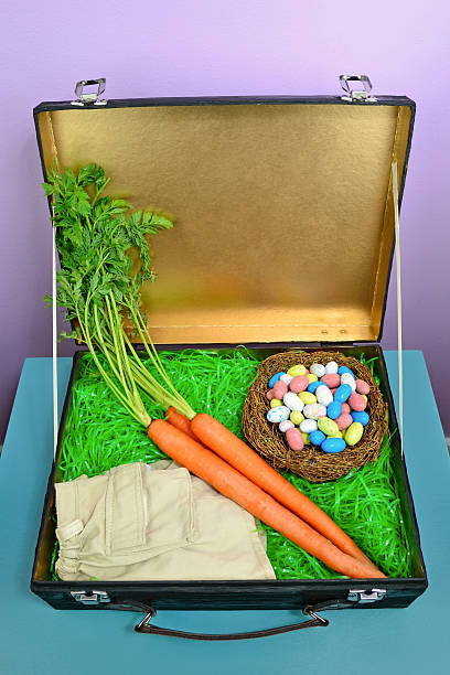 Concept of What the Easter Bunny Packs stock photo